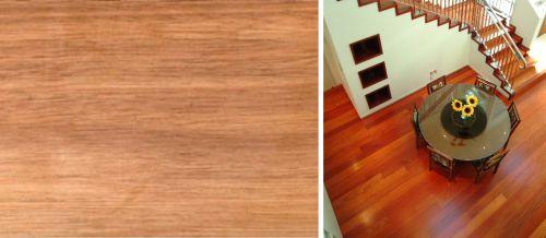 Wood saligna